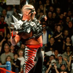 Road Warrior Hawk.